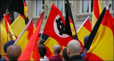 Manifestación del grupo de ultraderecha Democracia Nacional en Madrid, en 2008.