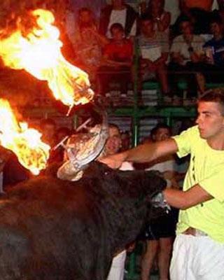 Imagen de uno de los espectáculos de los 'correbous', los 'toros de fuego'.