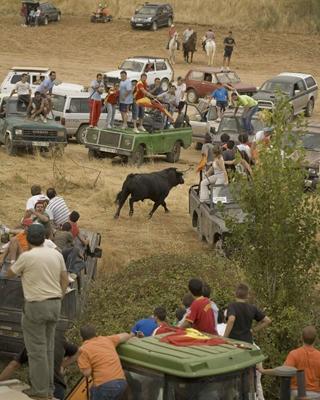 Foto de archivo de la persecución del toro en Galápagos. LUIS LLORCA