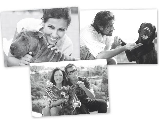 Famosos como Andreu Buenafuente y su pareja, la actriz Silvia Abril, el bailarín y coreógrafo Rafael Amargo o la periodista Ana Pastor han decidido exponer la imagen y la intimidad de sus perros para apuntarse a una buena causa para la que el año pasado ya participaron otros orgullosos propietarios caninos como el Gran Wyoming, Ferrán Adriá o Mónica Cruz. Entre los colaboradores en el proyecto almanaque del año 2012 también figuran la escritora Silvia Grijalba, el actor Francis Lorenzo, el también actor Julián López, ... Todo con la buena intención de dar a conocer la Leishmaniosis y contribuir a su prevención. Aunque no solo las celebridades pueden participar en esta campaña, que también está abierta a cualquiera que desee participar enviando un posado con su perro a la fundación de la compañía privada que se encarga de llevar a cabo esta campaña bienintencionada.