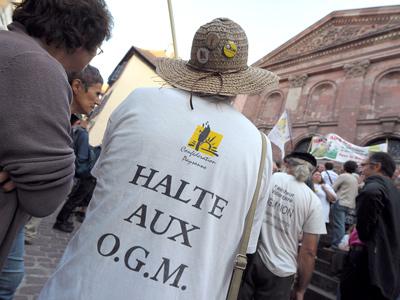 Protesta contra los transgénicos, en septiembre.