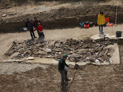 Los técnicos de Aranzadi trabajan en las tareas de la exhumación, ayer en Loma de Montija. óscar rodríguez