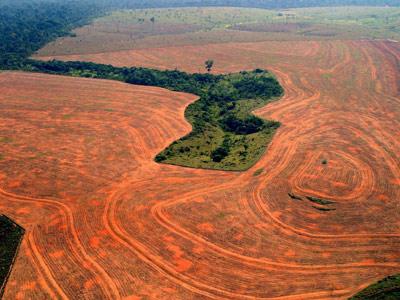 Imagen de archivo de una zona de selva arrasada para cultivar soja en Novo Progresso, en el estado de Pará. ap