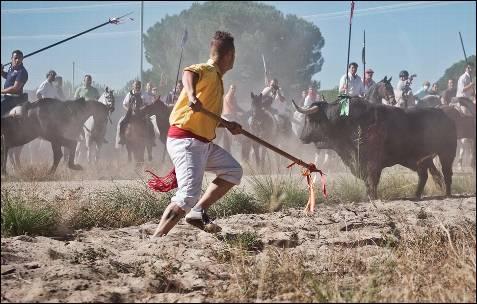 Óscar Bartolomé ataca al toro.