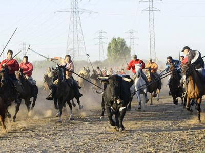 Los jinetes lancean a Afligido' el pasado martes. Reuters