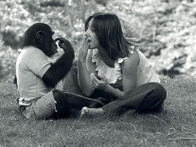el lenguaje y la comunicacion animal: