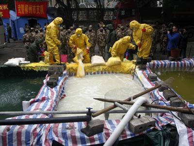 Operarios chinos limpian aguas contaminadas.