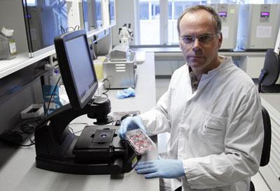 Mark Post sostiene una placa con los hilillos de carne con los que quiere hacer la primera hamburguesa sintética.