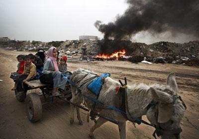 Una familia palestina circula por un vertedero en un carro tirado por un burro.