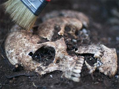 Uno de los cráneos humanos que se han encontrado en el cementerio municipal de Teba - EFE