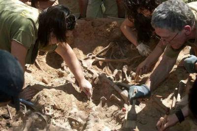 Trabajos de exhumación en las fosas de Villalba de Duero.