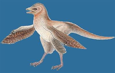 Un nuevo fósil de dinosaurio desafía la teoría evolutiva