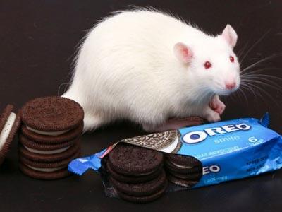 Las galletas Oreo son el segundo producto de alimentación más vendido del mundo.