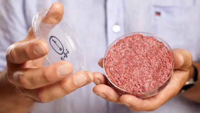 Fotografía cedida que muestra al profesor Mark Post, de la Universidad de Maastricht (Holanda), sosteniendo una hamburguesa generada en un laboratorio por 'Cultured Beef', en Londres, Reino Unido.- DAVID PARRY