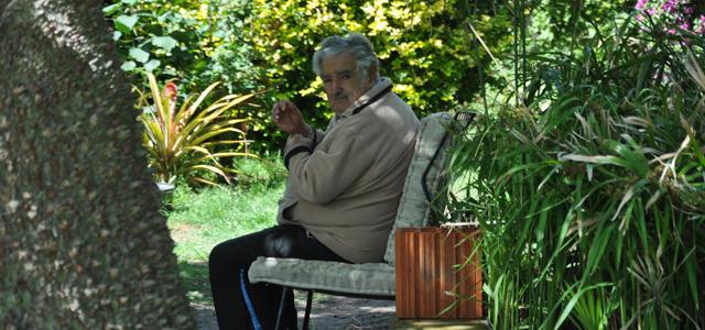 José Mujica en el jardín frente a su vivienda. MATÍAS BALL