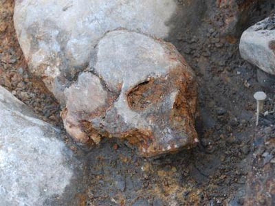Cráneo de mujer del yacimiento de Kanaljorden en Motala (Suecia), excavado entre 2009 y 2013.